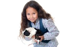 Free Pretty Girl With Guinea Pig Royalty Free Stock Photo - 16165745