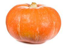 Free Pumpkin Stock Photo - 16165760