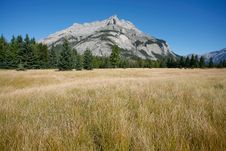 Free Mount Cascade In Banff National Park Stock Images - 16167934