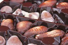 Free Chocolate Sweet-shells Royalty Free Stock Photos - 16168538