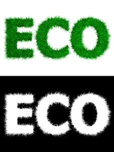 Free Eco Made Of Grass - White Background Royalty Free Stock Photography - 16169357
