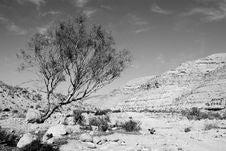 Free Desert Negev Stock Images - 16169564