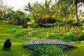Free Kauai Garden Bridge Royalty Free Stock Photography - 16171817