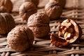 Free Walnuts Royalty Free Stock Photo - 16174105