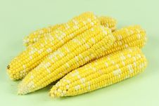 Free Corn Royalty Free Stock Photos - 16172138