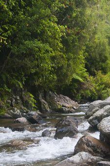 Free Waikawa Stream Stock Photography - 16172152