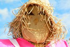 Free Lady Scarecrow Royalty Free Stock Photography - 16172367