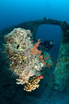 Female Scuba Diver Exploring Ship Wreck Stock Image