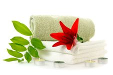 Free Spa With Red Lily Royalty Free Stock Images - 16178789