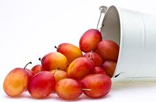 Free Plums Spilling From A Container Stock Photos - 16179463