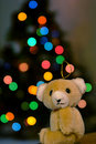 Free Lonely Ornament Stock Photos - 16183523