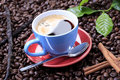 Free Black Coffee Royalty Free Stock Images - 16184459