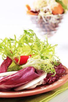 Free Green Salad Royalty Free Stock Photos - 16180308