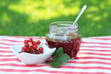 Free Red Currant Jam Stock Image - 16181991