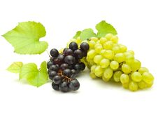 Free Bunch Of Grapes Royalty Free Stock Photo - 16182745