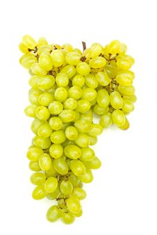Free Bunch Of Grapes Stock Photography - 16182842