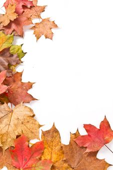 Free Autumn Frame Royalty Free Stock Photos - 16184158