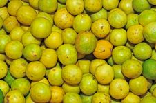 Free Yellow Lime Royalty Free Stock Images - 16185819