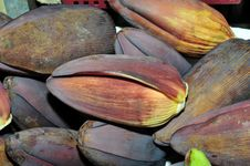 Free Banana Flower Stock Photography - 16185862
