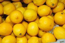 Free Yellow Lemon Fruit Royalty Free Stock Photo - 16186105