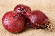 Free Red Onion Vegetable Royalty Free Stock Images - 16187549