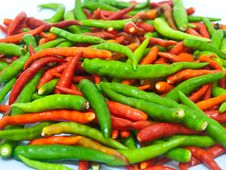 Free Pepper Royalty Free Stock Image - 16188946
