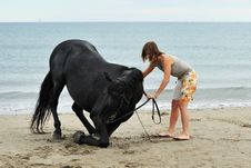 Free Girl And  Horse On The Beach Royalty Free Stock Photos - 16189308