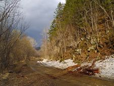 Last Snow On Wood Road Stock Photos