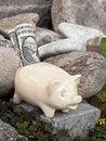 Free Saving Pig On Stones Stock Photo - 16195870