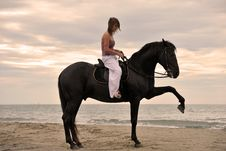 Free Girl And  Horse On The Beach Stock Image - 16190641