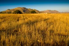 Free Field And Mountain Views Royalty Free Stock Image - 16190706