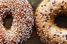 Free Bagels Royalty Free Stock Photo - 16191915