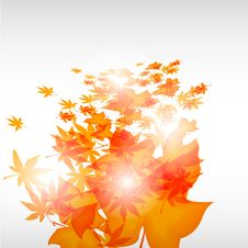 Abstrac Leafs Vector Background Stock Image
