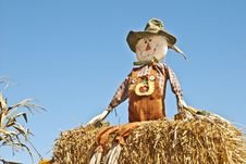 Free Scarecrow With Sky Background Stock Photos - 16195543