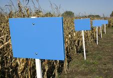 Billboards On Cornfield Stock Images