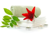 Free Spa With Red Lily Stock Photos - 16195923