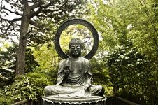 Free Buddha Statue In The Forest Royalty Free Stock Images - 16199119