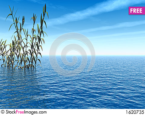 Free Deep_Blue Royalty Free Stock Photo - 1620735