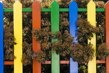 Free Colored Fence Royalty Free Stock Images - 1621369