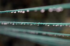 Raindrops On Washing Line 1 Royalty Free Stock Photography
