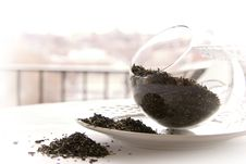 Free Temi Tea Leaves Royalty Free Stock Photography - 1628697