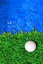 Free Golf Ball On Green Grass Royalty Free Stock Photography - 16200087