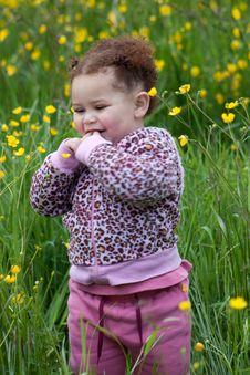 Free Flower Toddler 2 Royalty Free Stock Image - 16200616