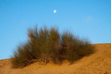Desert Day And Night Royalty Free Stock Image