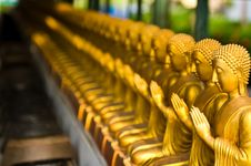 Free View Of Buddha Statue Stock Image - 16203011