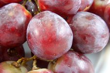 Free Grapes Royalty Free Stock Images - 16203169