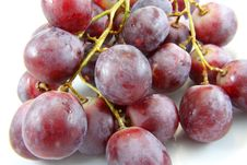 Free Grapes Stock Photo - 16203560