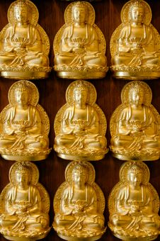 Nine Golden Buddha Stock Image