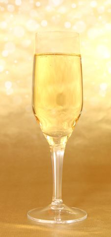 Free Bottle Of Champagne Stock Images - 16205574