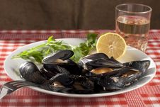 Free Mussels Stock Images - 16206924